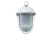 Светильник НСП 02-100-002.01 У2 (с решеткой, стекло, крюк) TDM
