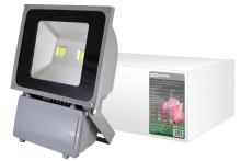 Прожектор светодиодный СДО100-1 2x50 Вт, 6000 К, IP65,серый, TDM
